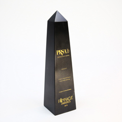 Public Relations Society of America's Pinnacle Award
